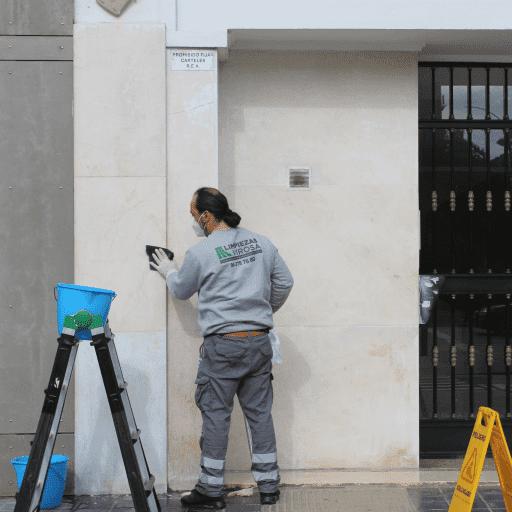 Limpieza fachadas Virosa